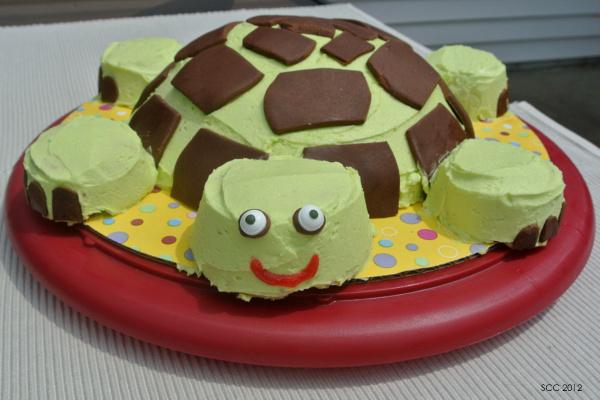Turtle Cake Cake Ideas And Designs